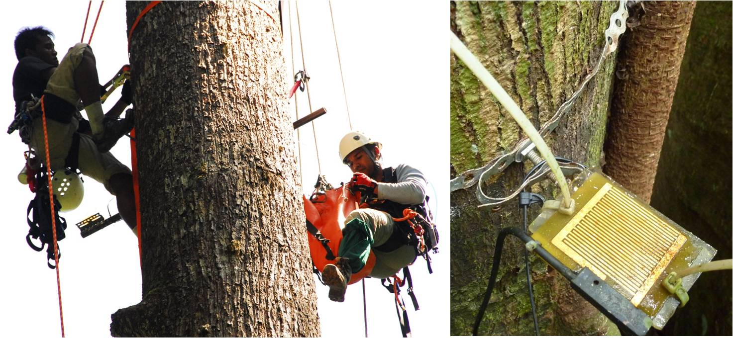 Installing Campbell Sci. Ltd Model 237 